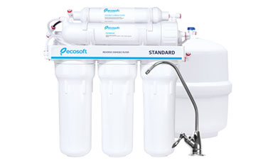 Ecosoft 6th Stage Add-On Coconut Carbon Water Filter System Review